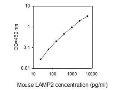 Mouse LAMP2 (CD107b) ELISA