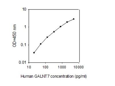 Human GALNT7 ELISA
