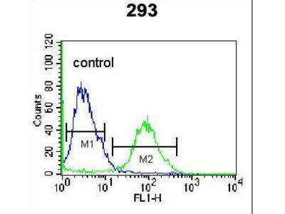OR4F15 Polyclonal Antibody