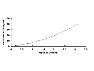 Bovine Cluster Of Differentiation 40 Ligand (CD40L) ELISA Kit