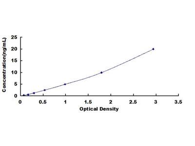 Human Dual Specificity Phosphatase 9 (DUSP9) ELISA Kit