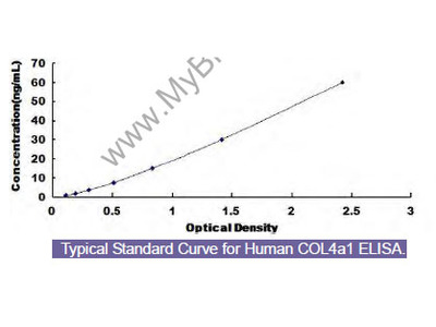 Human Collagen Type IV Alpha 1 (COL4a1) ELISA Kit