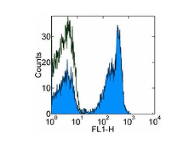 CD45R antibody (FITC)