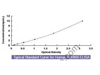 Human Aurora Kinase B (AURKB) ELISA Kit