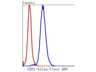 CD31 Recombinant Rabbit Monoclonal Antibody [SU03-59] (ET1608-48)