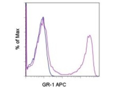 Rat Monoclonal Ly-6G / Ly-6C Antibody