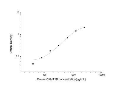 Creatine kinase MT 1B ELISA Kit