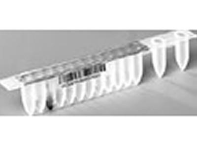 MagNA Pure Compact Nucleic Acid Isolation Kit I