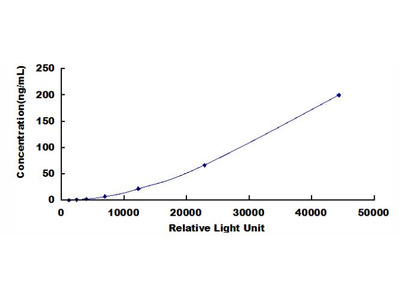 CKB Chemi-Luminescent ELISA Kit (Human) (OKCD03376)