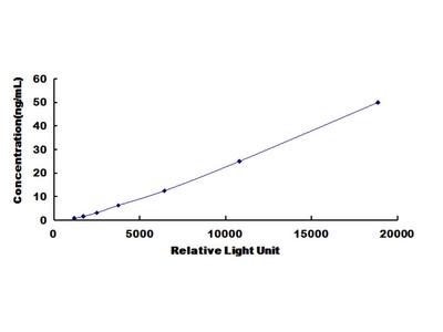 FCN1 Chemi-Luminescent ELISA Kit (Rat) (OKCD03452)