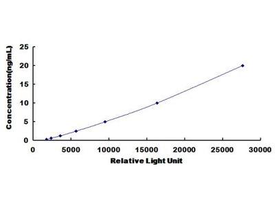 LEP Chemi-Luminescent ELISA Kit (Rat) (OKCD03713)