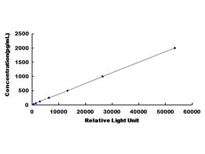 FOLH1 Chemi-Luminescent ELISA Kit (Rat) (OKCD03503)