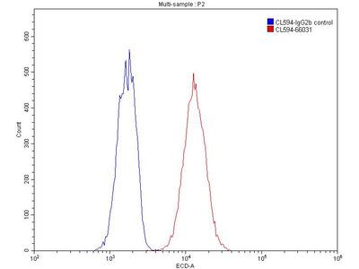 CoraLite594-conjugated alpha Tubulin Antibody (1E4C11)