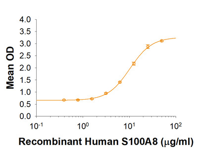 S100A8 Protein