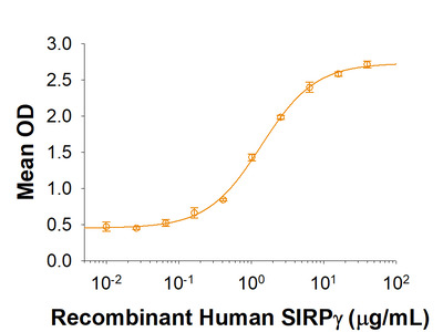 SIRP gamma /CD172g His-tag Protein