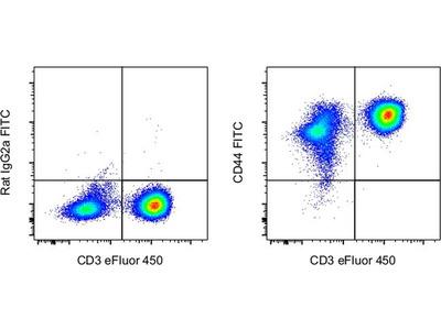CD44 Monoclonal Antibody (Hermes-1), FITC, eBioscience™