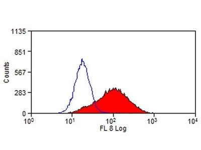 CD365 (TIM1) Monoclonal Antibody (RMT1-10)