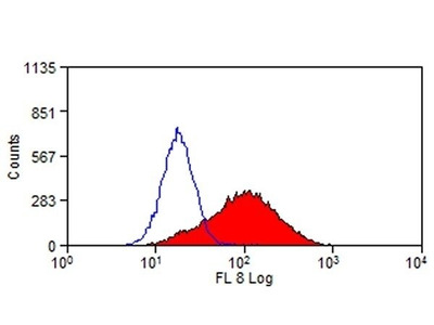 CD365 (TIM1) Monoclonal Antibody (RMT1-10), FITC