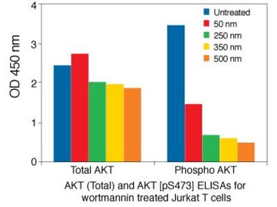 AKT (Phospho) [pS473] Human ELISA Kit