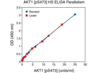 AKT1 (Phospho) [pS473] Human ELISA Kit, Ultrasensitive