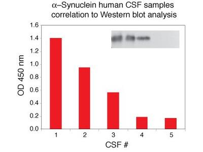 alpha Synuclein Human ELISA Kit