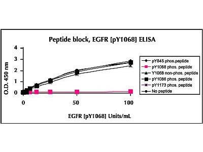 EGFR (Phospho) [pY1068] Human ELISA Kit