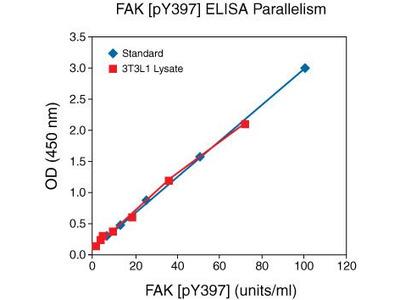 FAK (Phospho) [pY397] Human ELISA Kit