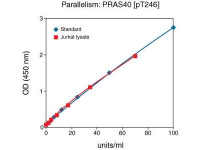 PRAS40 (Phospho) [pT246] Human ELISA Kit