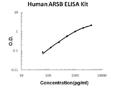 Human ARSB ELISA Kit PicoKine