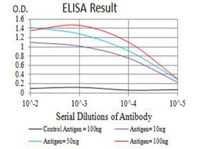 anti-CHRNA2 Antibody