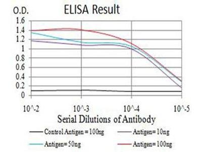 anti-C1QC Antibody