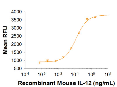 IL-12 (linked heterodimer) Protein