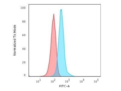Anti-GFAP antibody [GFAP/2076]