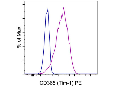 A Good Tim-1 Antibody from Thermo