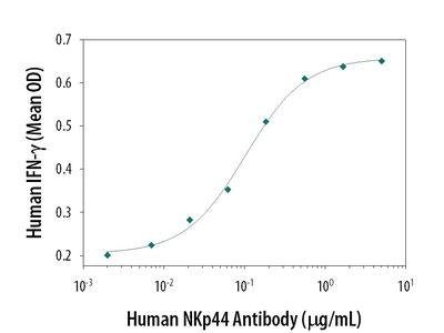 NKp44 / NCR2 Antibody