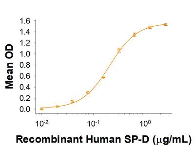 SIRP beta 1 /CD172b Protein