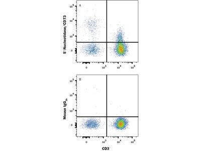 5'-Nucleotidase / CD73 APC-conjugated Antibody
