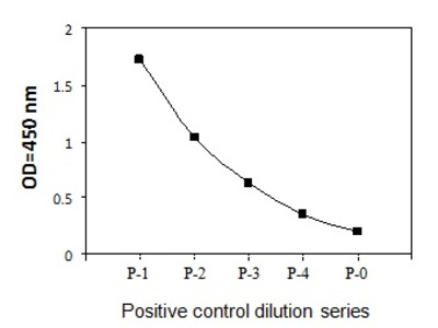 Human Phospho-BTK (Y551) Quantitative ELISA