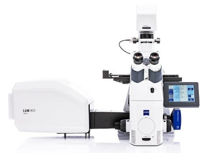 Image result for Confocal Laser Scanning Microscope