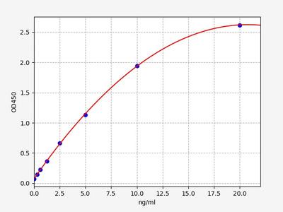 Rat Sncg(Gamma-synuclein) ELISA Kit