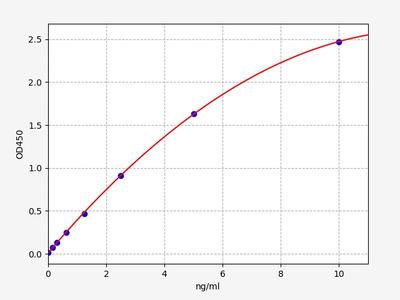 Rat Prim2(DNA primase large subunit) ELISA Kit