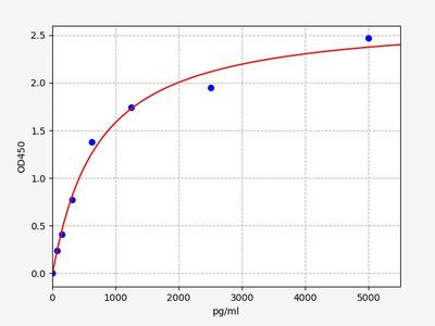 Rat CSNK2A2(Casein Kinase 2, alpha 2 Polypeptide) ELISA Kit