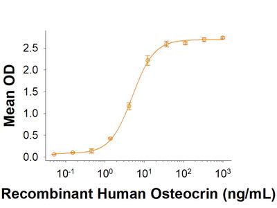 NPRC /NPR3 Fc Chimera Protein