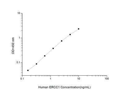 ERCC1 ELISA Kit (Human) (OKEI00257)