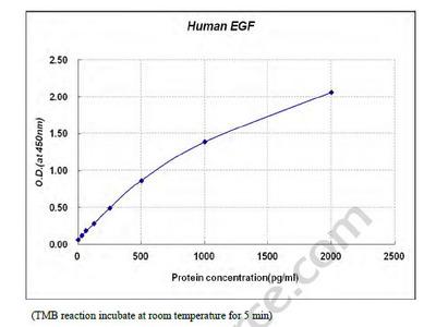 Epidermal Growth Factor (EGF) ELISA Kit
