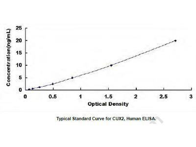 Human Cut Like Homeobox Protein 2 (CUX2) ELISA Kit