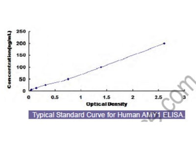 Human Amylase Alpha 1, Salivary (AMY1) ELISA Kit