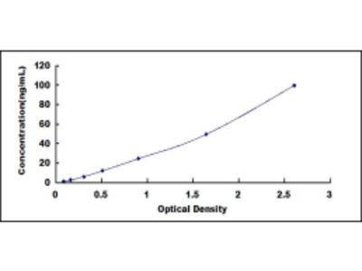 Human Mevalonate Decarboxylase (MVD) ELISA Kit