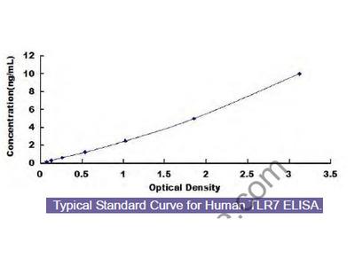 Human Toll Like Receptor 7 (TLR7) ELISA Kit