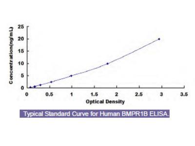 Human Bone Morphogenetic Protein Receptor 1B (BMPR1B) ELISA Kit